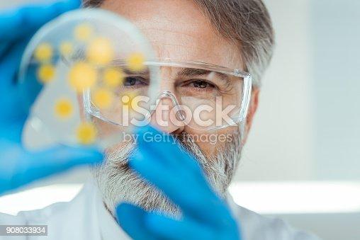 istock Laboratory 908033934