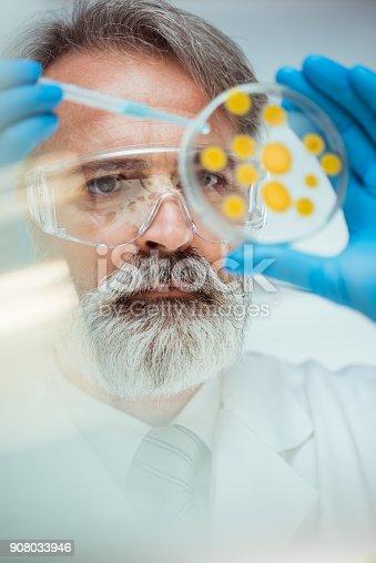 istock Laboratory 908033946