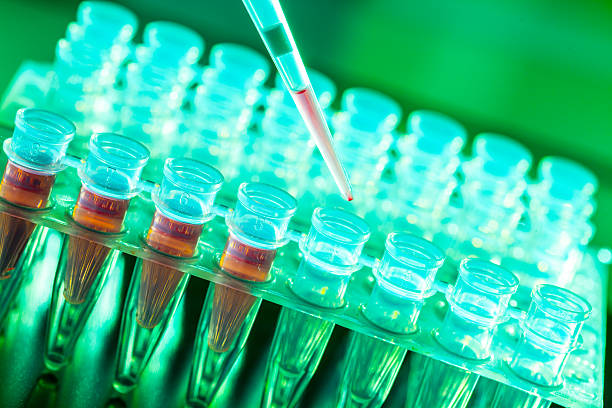 Laboratory research of cancer diseases,  rack with RNA samples stok fotoğrafı