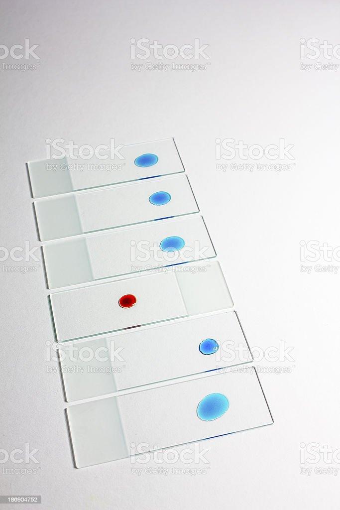Laboratory samples royalty-free stock photo