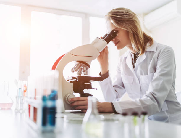 Laboratory scientist working. stock photo