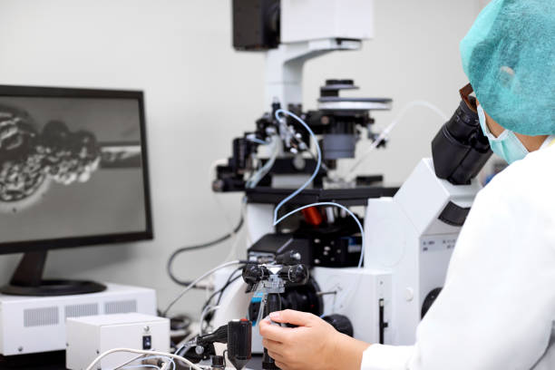 Laboratory technician performing in vitro fertilization Side view of laboratory technician performing intracytoplasmic sperm injection for in vitro fertilization of a human egg. artificial insemination stock pictures, royalty-free photos & images