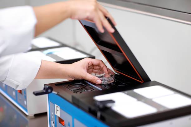 laboratory technician placing culture dish in incubator - criobiologia foto e immagini stock
