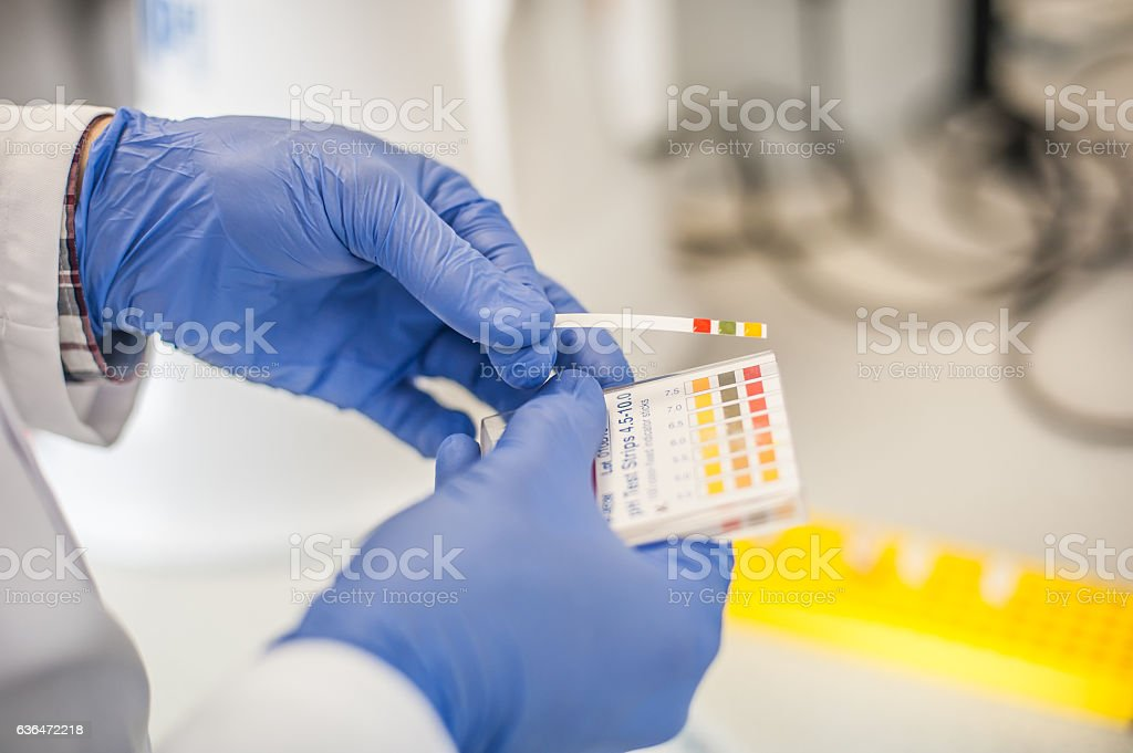 Laboratory technician working with test strips indicator paper stock photo