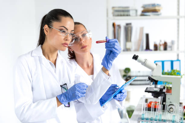 Laboratory technicians making blood tests stock photo