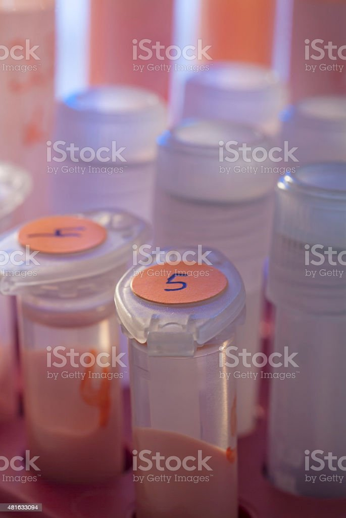 laboratory test tubes stock photo