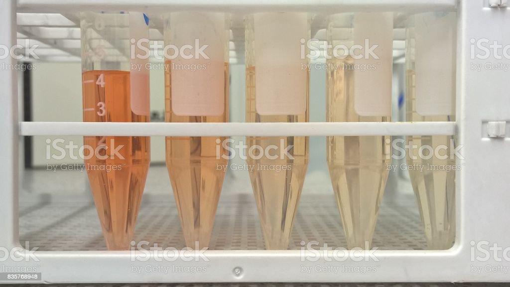 Laboratory testing stock photo