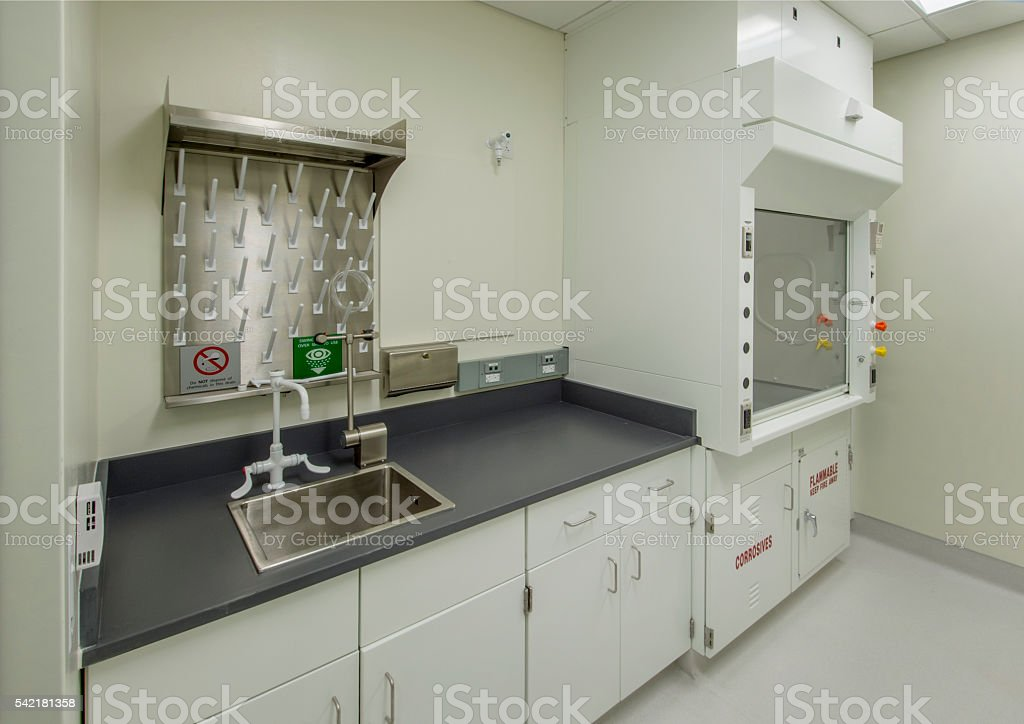 Laboratory with Fume Hood stock photo