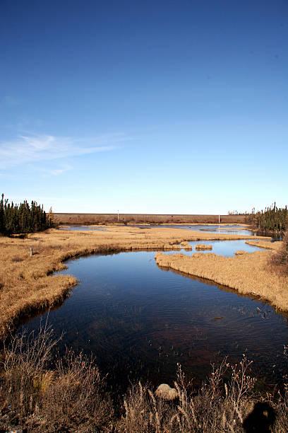 Labrador Landscape stock photo