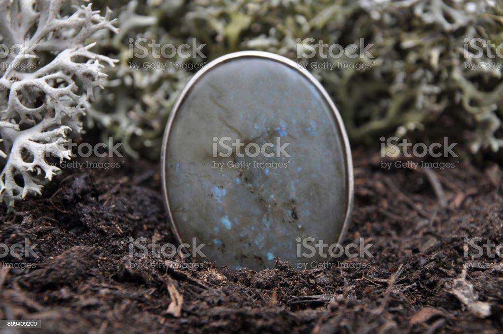 Labradorite on forest floor stock photo