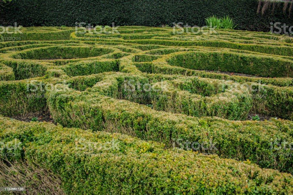 Labyrinth Garden in Dunedin Botanic Garden, Zuid eiland, Nieuw-Zeeland foto