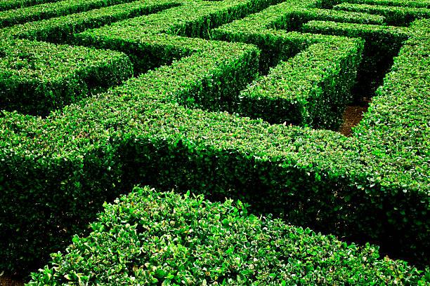 labyrinth - labyrinth stock-fotos und bilder
