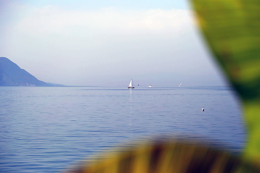 Lac Leman (Lake Geneva) near Montreux, Switzerland in summer