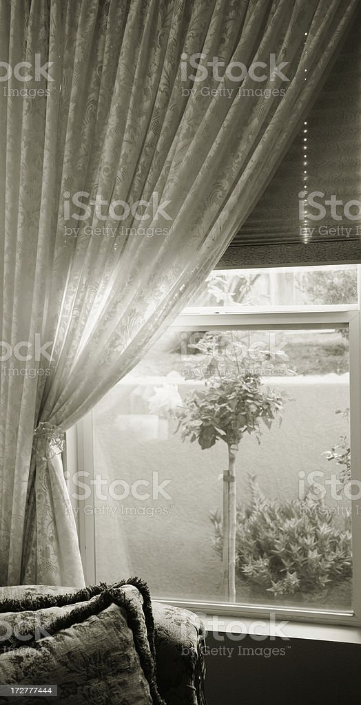 lace curtains royalty-free stock photo