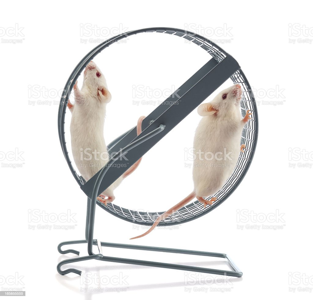 Lack of Teamwork; The Wheel Stands Still royalty-free stock photo