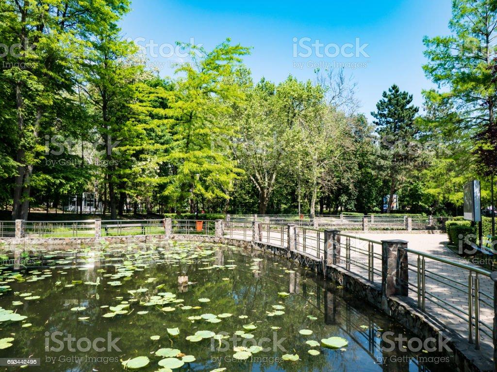 Lacul Cu Nuferi フェリックス ...