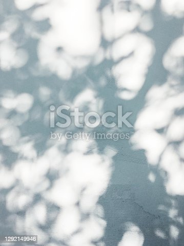 Lacy shadows from trees on white wall. Abstract background with concrete texture.