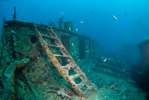 ladder leading to the bow deck of ashipwreck - artificial reef stock pictures, royalty-free photos & images