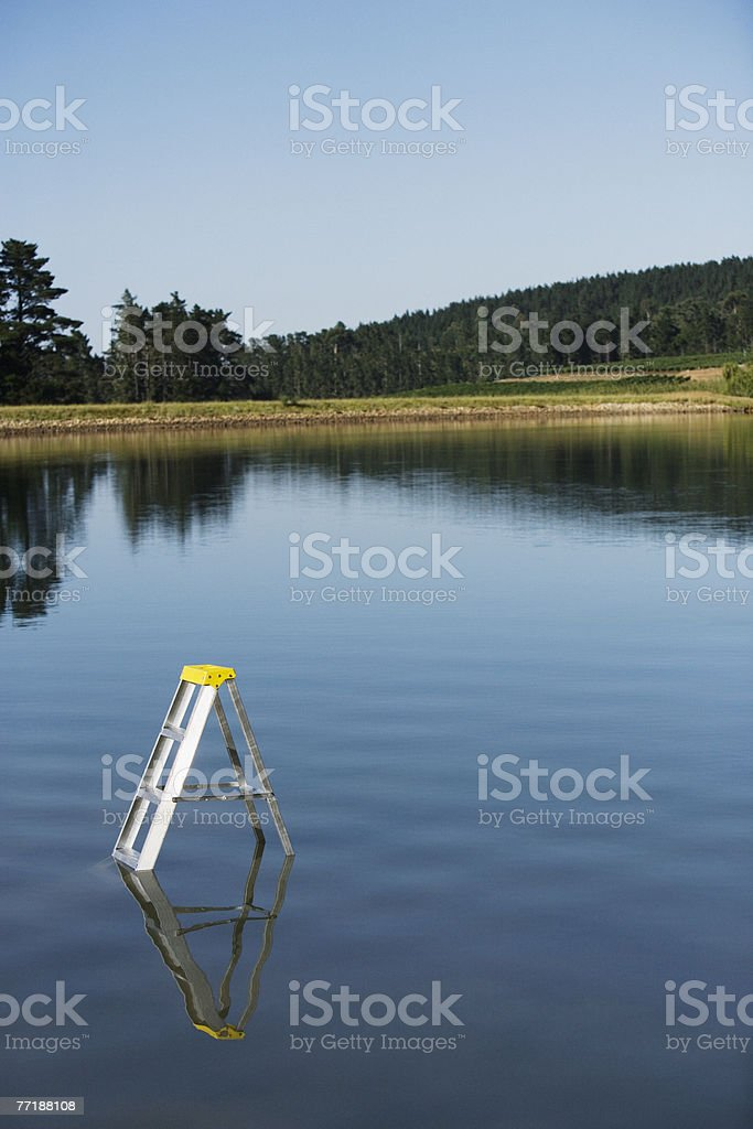 A ladder submerged in the water royalty-free stock photo