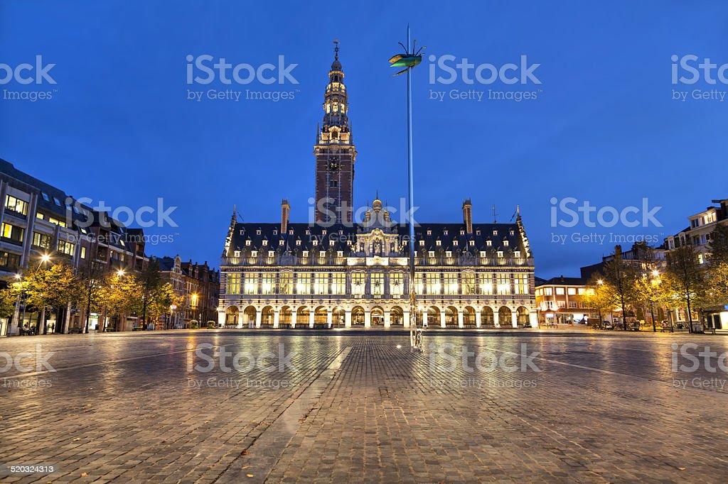 Ladeuze square der Löwen am Abend – Foto