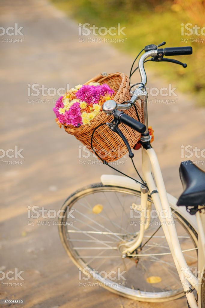 Ladies bike with a bouquet of pink and yellow flowers in a basket with autumn trees behind. стоковое фото