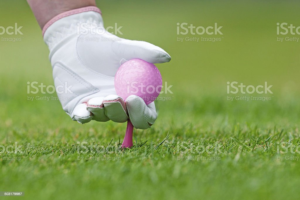 Ladies golf hand placing pink tee and ball into ground. stock photo