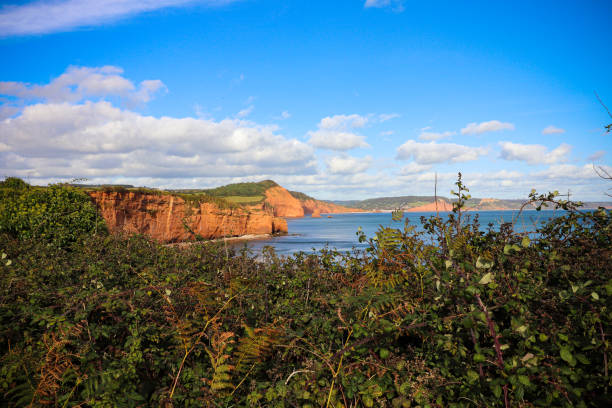 Ladram Bay Cliffs in Devon stock photo