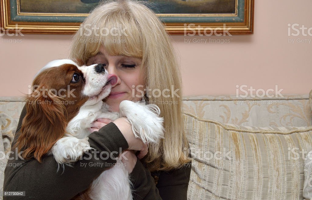 Lady and Cavalier stock photo