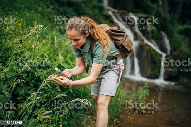 Photo of Lady biologist exploring plants by the waterfall
