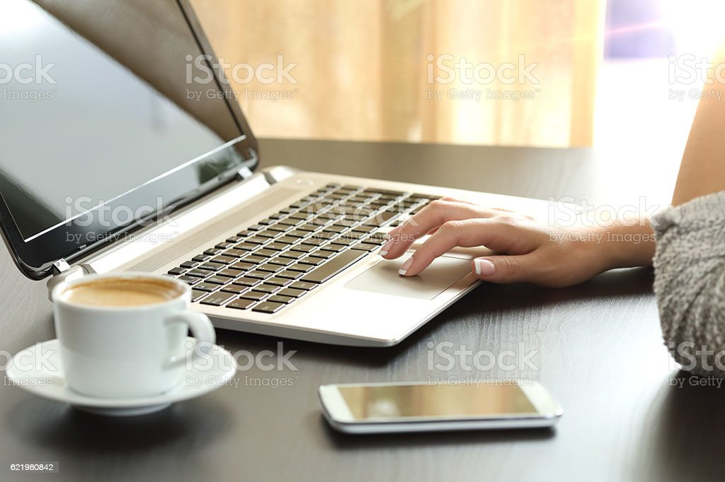 Lady hand browsing a laptop at home stock photo