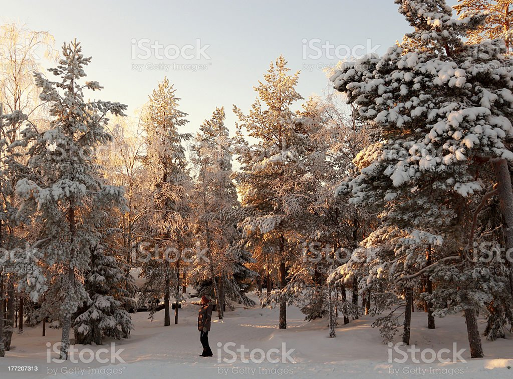 Lady in nordic winter royalty-free stock photo