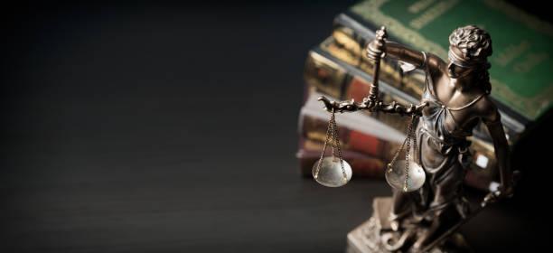 la señora justicia. estatua de la justicia en biblioteca - abogado fotografías e imágenes de stock