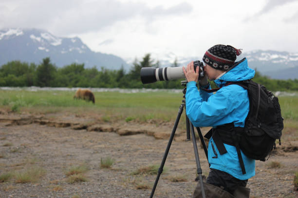 Lady Looking in Camera with Bears in Alaska stock photo