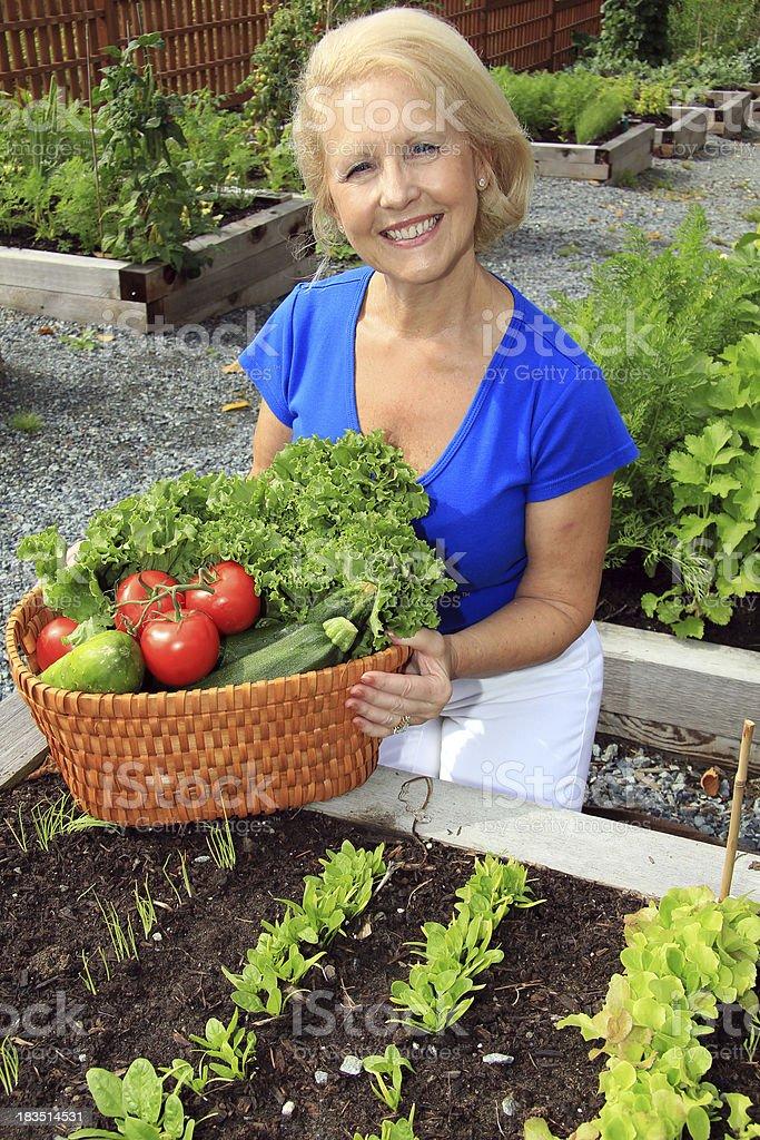 Lady vegetable gardener royalty-free stock photo