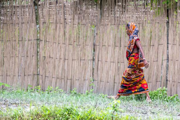 Barisal, Bangladesch - 11. Juli 2016: Eine Dame trägt einen bunten floralen Sari zu Fuß in das Land neben einem hohen Bambuszaun – Foto