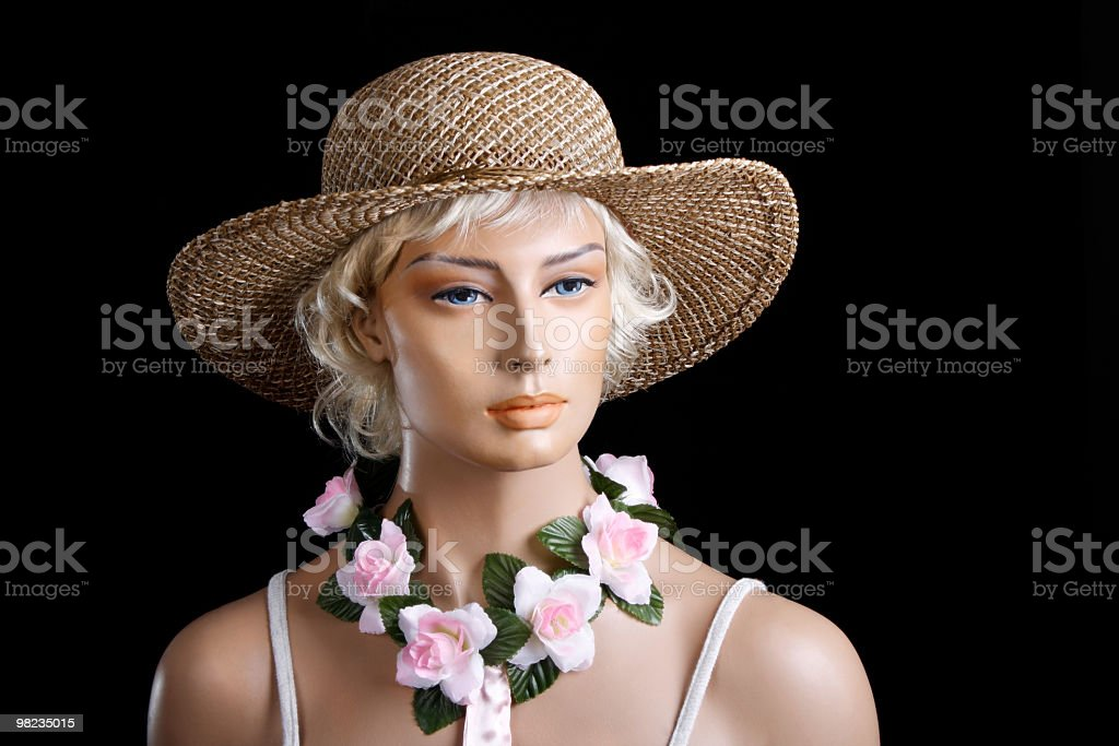 lady with the straw hat royalty-free stock photo