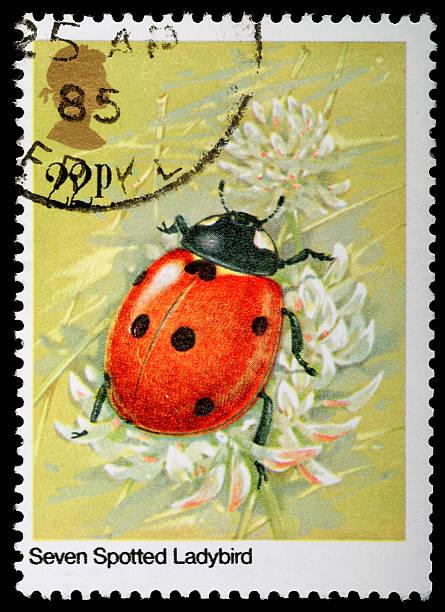Ladybug Ladybird Postage Stamp Stock Photo More Pictures Of Animal