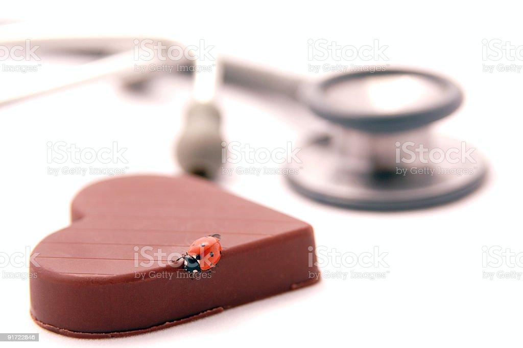 Ladybug on the chocolate royalty-free stock photo