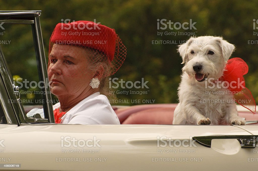 Lady,dog and a car stock photo