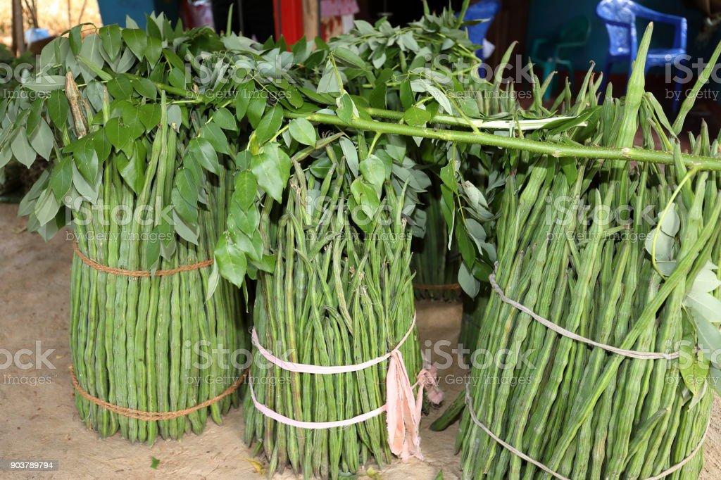 Ladyfinger Gemüse stock photo