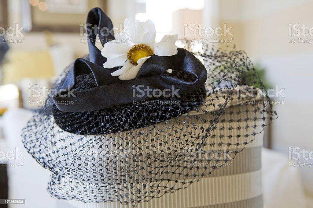 Lady's  Veiled Hat stock photo
