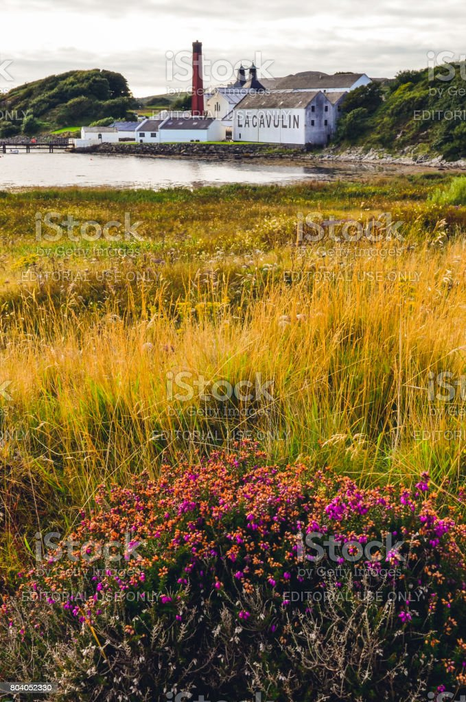 Lagavulin distillery factory with meadow foreground, Islay, United Kingdom stock photo