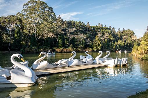 Lago Negro (Black Lake) with Swan Pedal Boats - Gramado, Rio Grande do Sul, Brazil