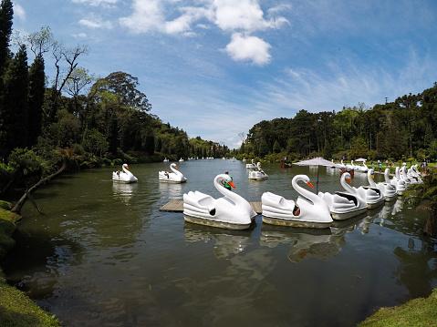 Lago Negro (Black Lake) with Swan Pedal Boats in Gramado, Rio Grande do Sul, Brazil