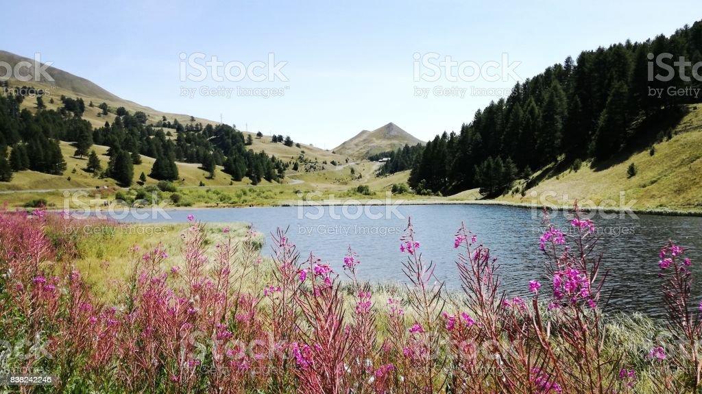 lago stock photo