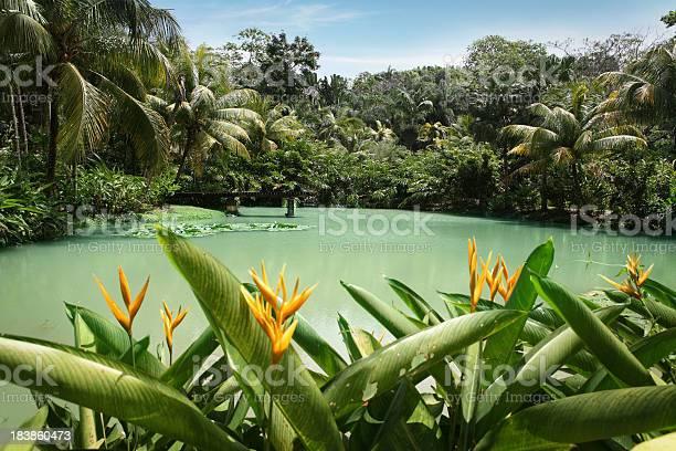 Lagoon at cranbrook flower forest picture id183860473?b=1&k=6&m=183860473&s=612x612&h=nuimxz904pic93cvvehenqneyfvtf6u k90k9vu4 jw=