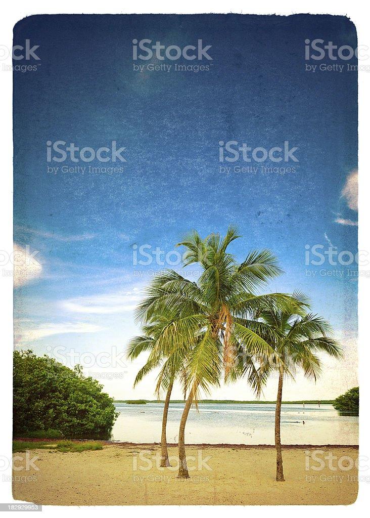 lagoon beach in the florida keys royalty-free stock photo