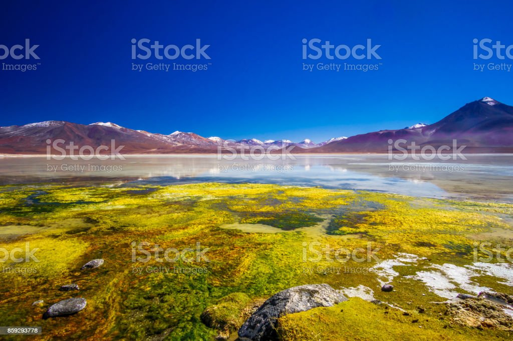 Lagoon Blanco amd mountain of the Andes in the Altiplano of Bolivia stock photo