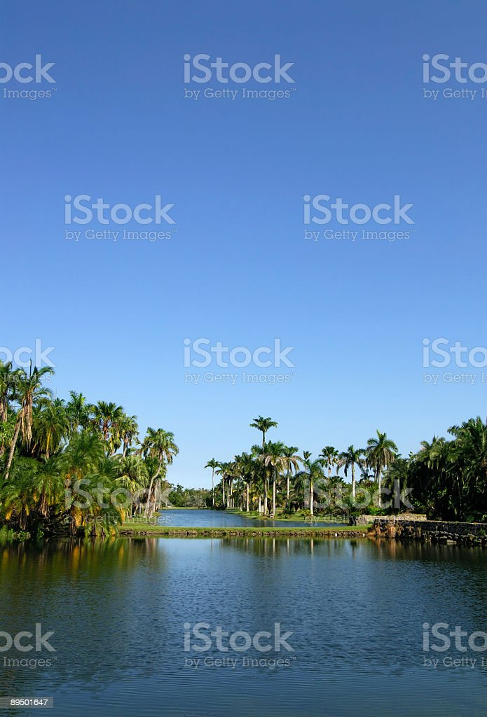 lagoon in a park stock photo