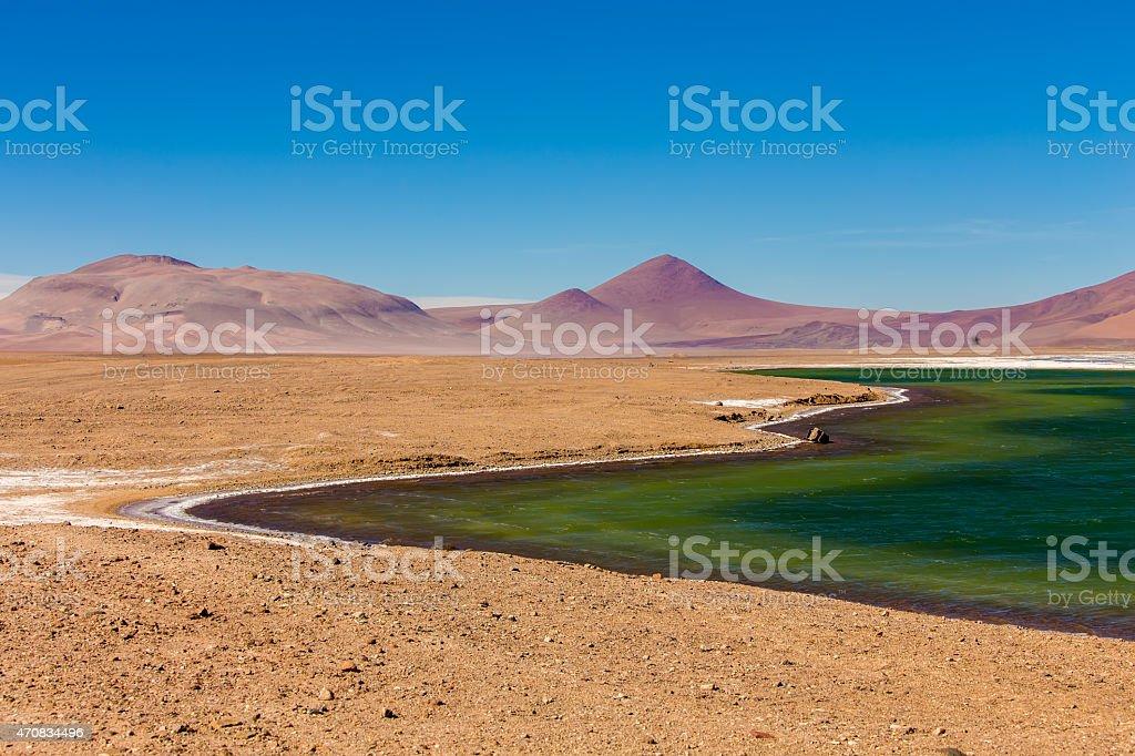 Lagoon in Atacama, Chile stock photo